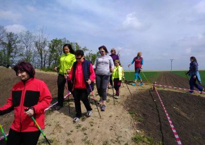 nordic walking 4.5 (9)-min
